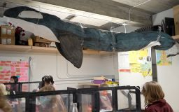 Whale Project Inspires Young Ocean Stewards